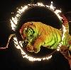 Цирки в Деркуле